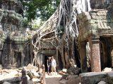 cambodia Angkor wat (tomb raider)